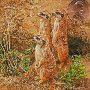 miniature painting by Wes Siegrist of meerkats