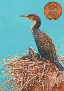 """Nesting Comorants"" by Wes shown with US penny for scale. 2 1/2 x 3 1/2"