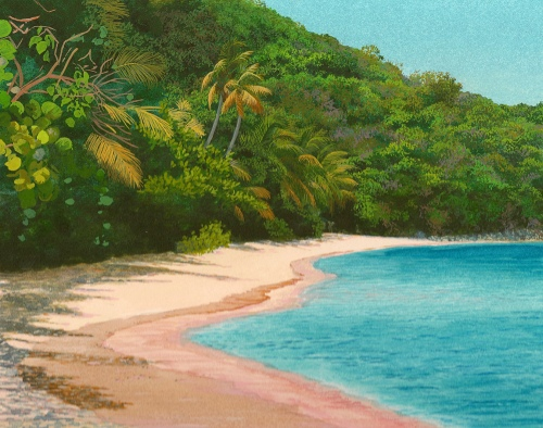 Hawksbill Beach painting in progress.