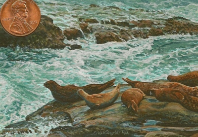 """sealions at La Jolla"" by Wes shown with US penny for scale. 2 1/2 x 3 1/2"""