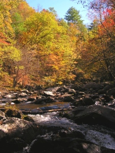 A beautiful fall day in the Smoky Mountains.