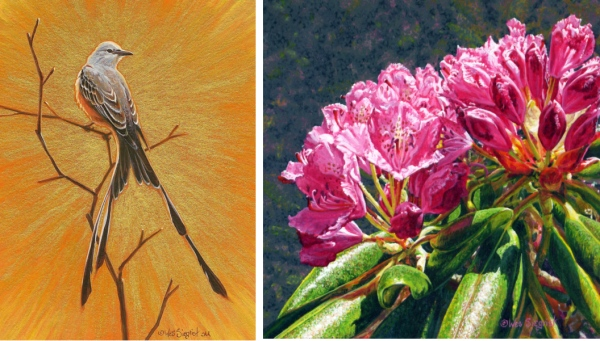 """Oklahoma Icon"" 4 1/2 x 3 1/2 inches, and ""Catawba Rhododendron"" 4 x 4 inches, by Wes."