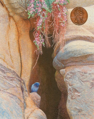 """""""The Cliffs at La Jolla"""" by Rachelle, measures 2 1/2x3 1/2 inches."""