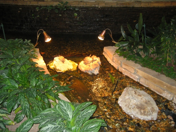 A few turtles enjoying the sun lamps in the hotel lobby in Tulsa, where we were for the NatureWorks Art Show.