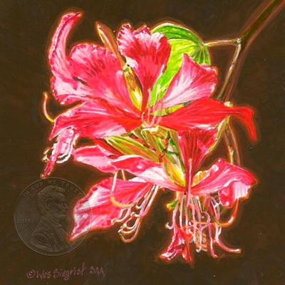 """Orchid Tree Blossoms"" by Wes, measures 3 x 3 inches."