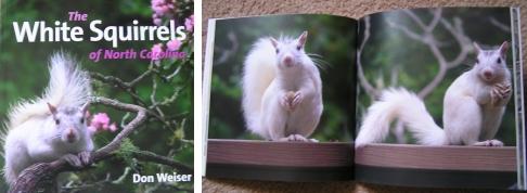 "Don's book, ""The White Squirrels of North Carolina""."