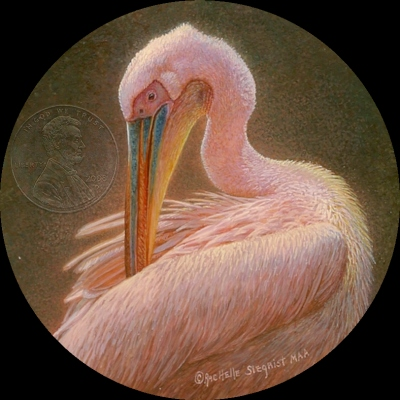 """Preening White Pelican"" by Rachelle, measures 2 3/4 inches."