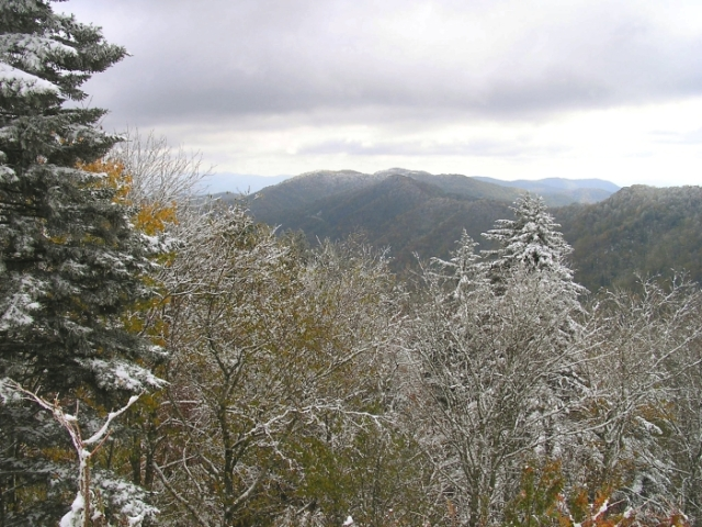 A beautiful snowfall on fall leaves atop Newfound Gap.