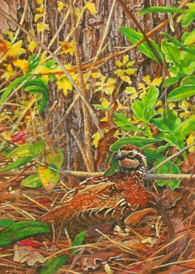 """Birdsong Bobwhite"" by Wes, measures 3½ x 2½ inches."
