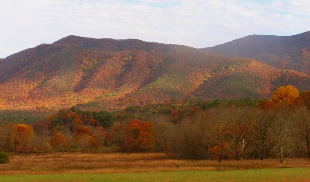 Cades Cove adorned in beautiful fall splendor.