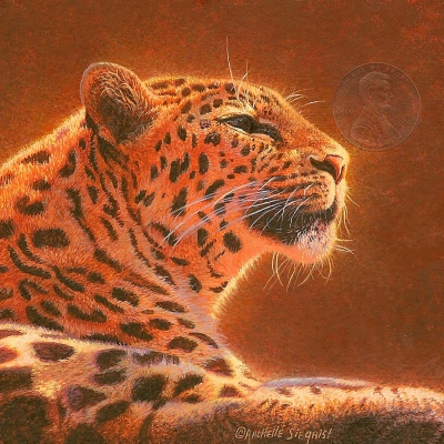"Basking Amur Leopard"" by Rachelle, measures 3 1/2 X 3 1/2 inches."