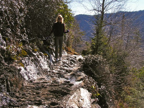 On the trail to Mt. Le Conte