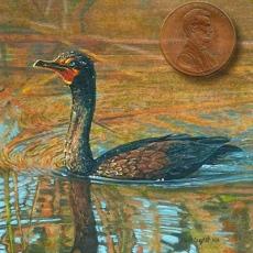 cormorant miniature painting