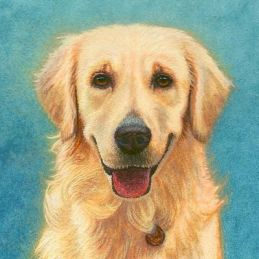 english retriever painting, miniature