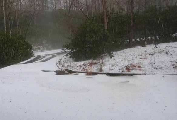 Photo of hail in Brevard, NC