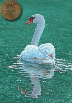 swan painting miniature