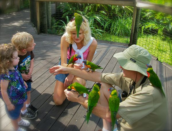 photo of feeding lorikeetsat brevard zoo