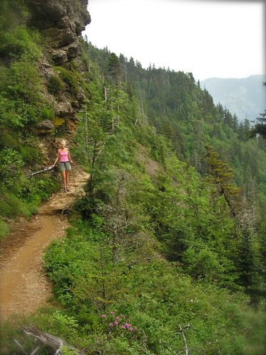 photo of trail to LeConte