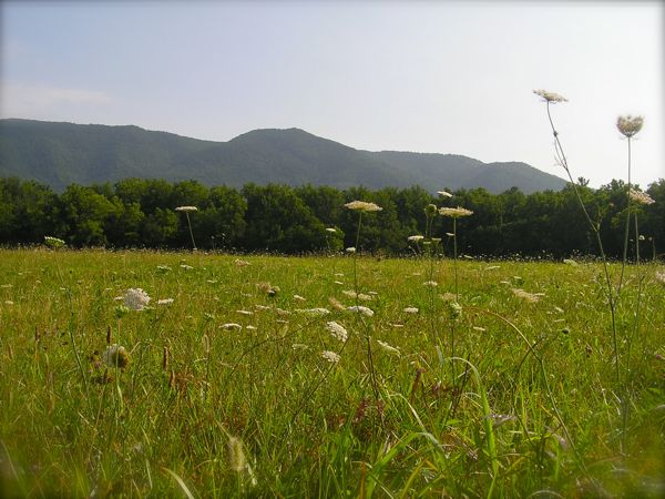 photo of cades cove