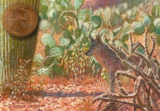 miniature painting of a coyote and cactus