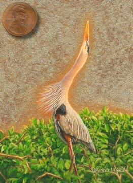 miniature painting of a Great Blue Heron