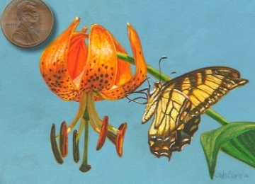 miniature painting of a tiger swallowtail butterfly ont a turkscap lily