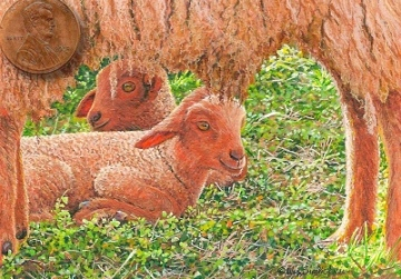 sheep painting miniature