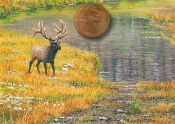 Elk painting