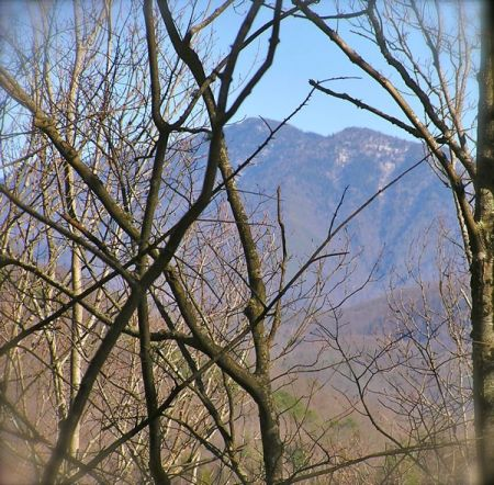 photo of Mt. Le Conte with snow