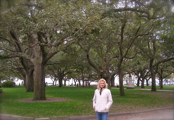 The oak trees at white point gardens in charleston