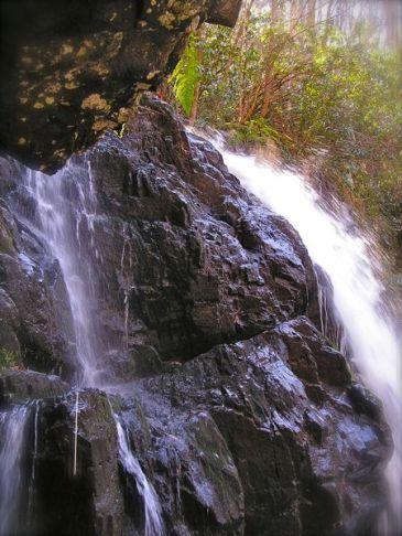 photo of spruce flats falls
