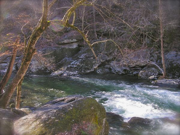 little river in the smokies