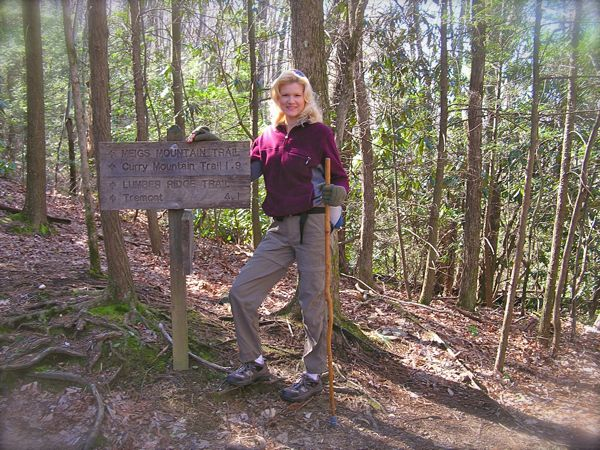 curry mountain trail in the smokies