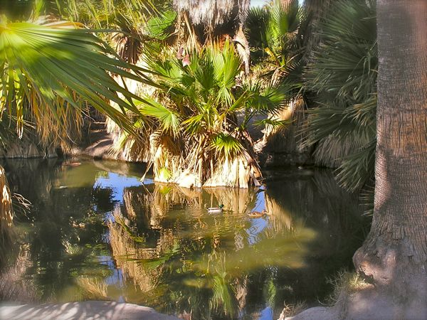 Agua calienta photo