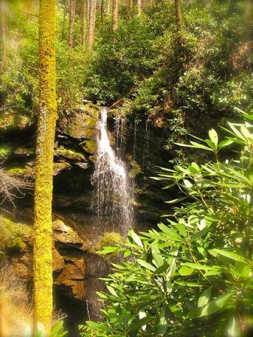 White Oak Sinks or Rainbow Falls photo