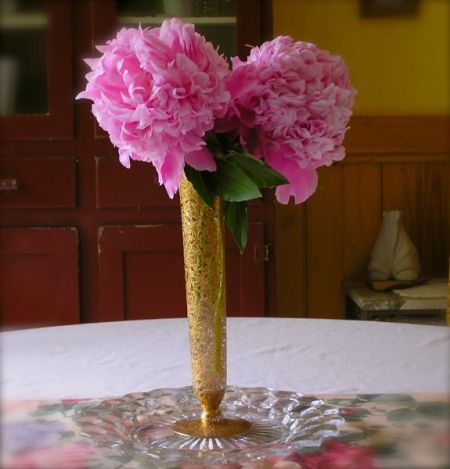 photo of peonies