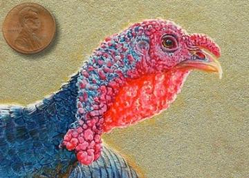 tom turkey painting