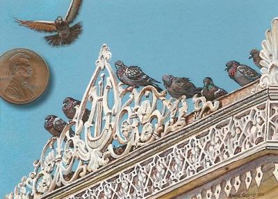 pigeon miniature fine art painting