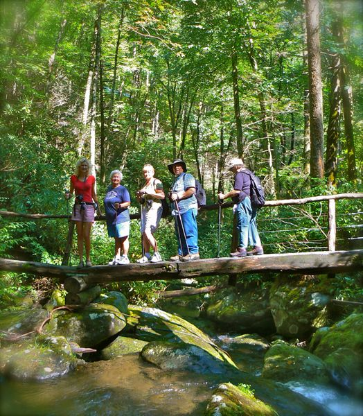 foot bridges in the smokies