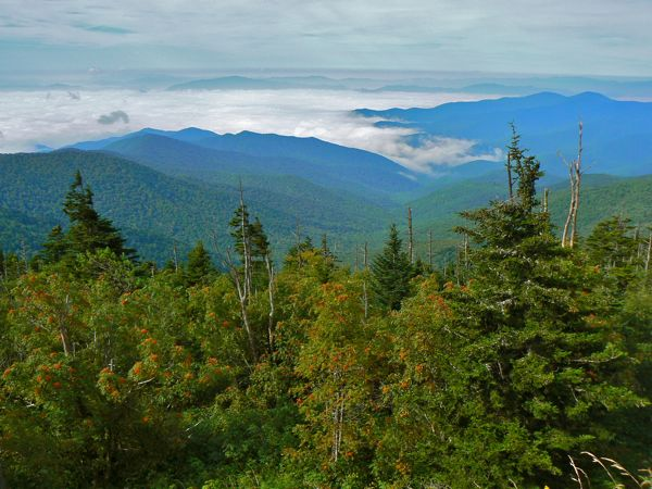 view from Clingman's Dome parking lot