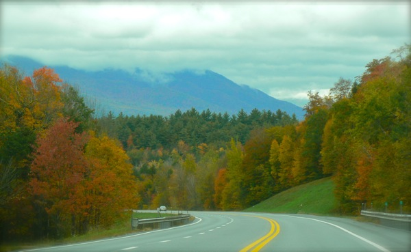 fall leaves in vermont