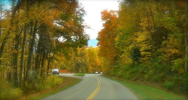 fall in smoky mountain national park image