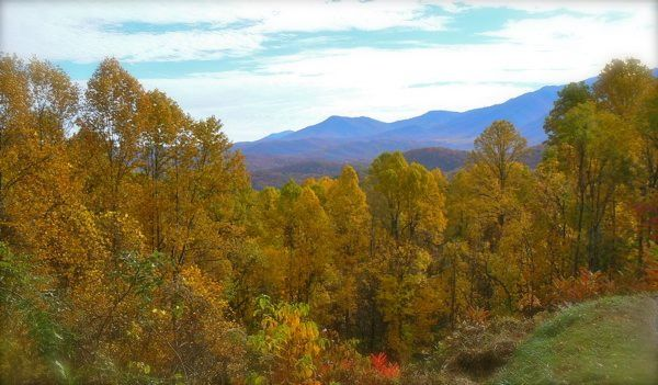 smokies in the fall image