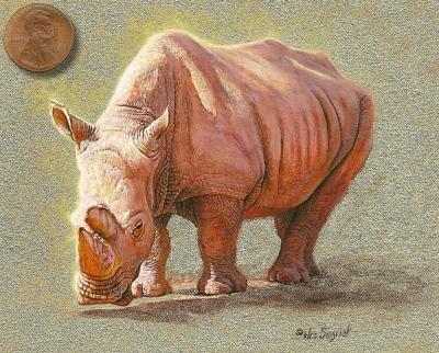 african white rhino painting