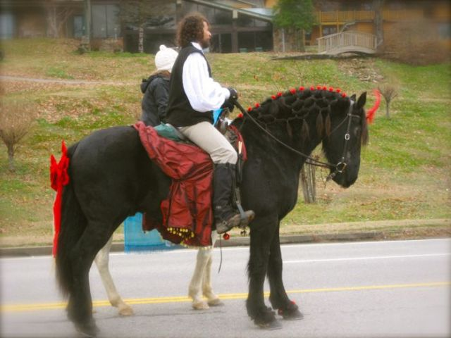 horses in townsend christmas parade