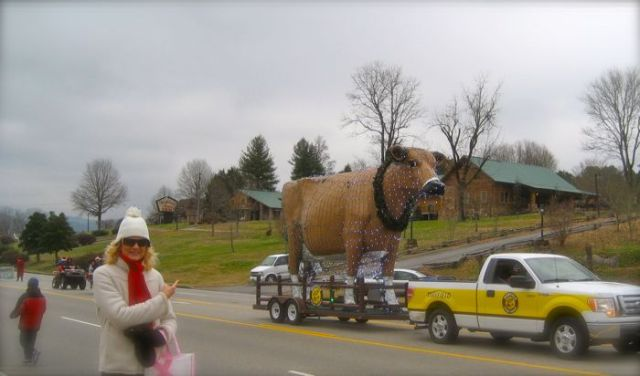 mayfield dairy cow