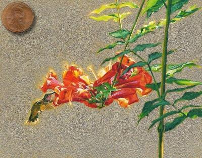 Ruby-throated Hummingbird painting miniature