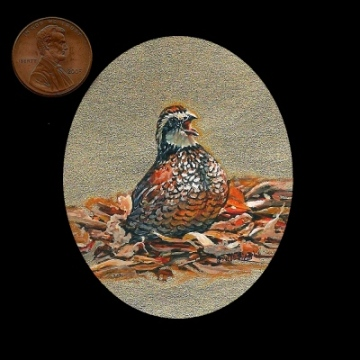a miniature painting of a male bobwhite quail