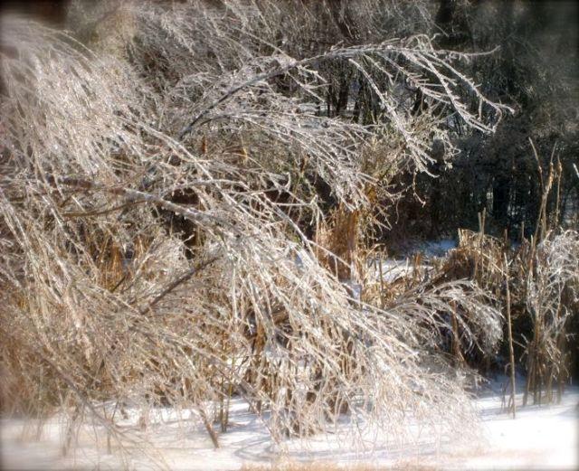 ice along I40