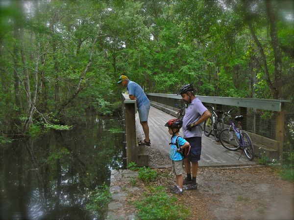 riding bikes in highlands hammock state park